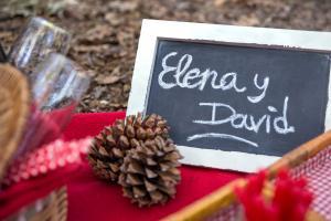 elena y david 001