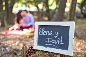 elena y david 035